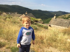 Oliver on one of our walks. Go Gators.